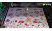 Video Laser die cutter and engraver applications